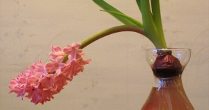 drooping flower in a vase